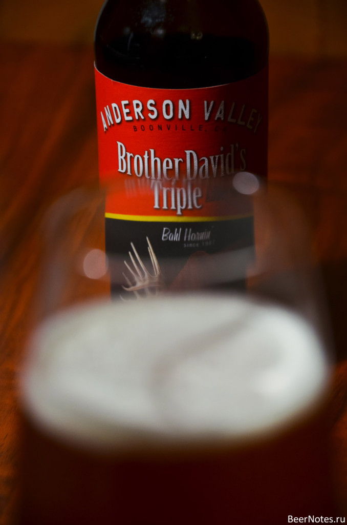 Anderson Valley Brother David's Triple Abbey Style Ale6