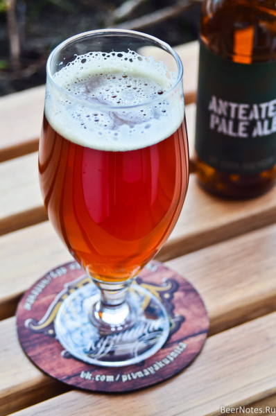 Jaws Anteater Pale Ale4