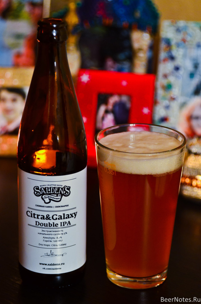 Salden's Citra & Galaxy Double IPA